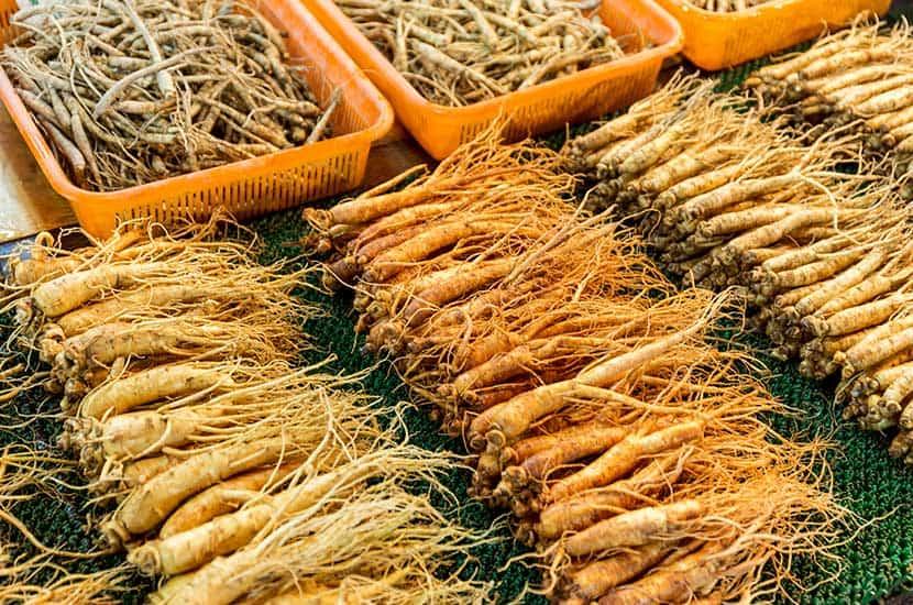 El ginseng ha sido utilizado por miles de años por la medicina tradicional China