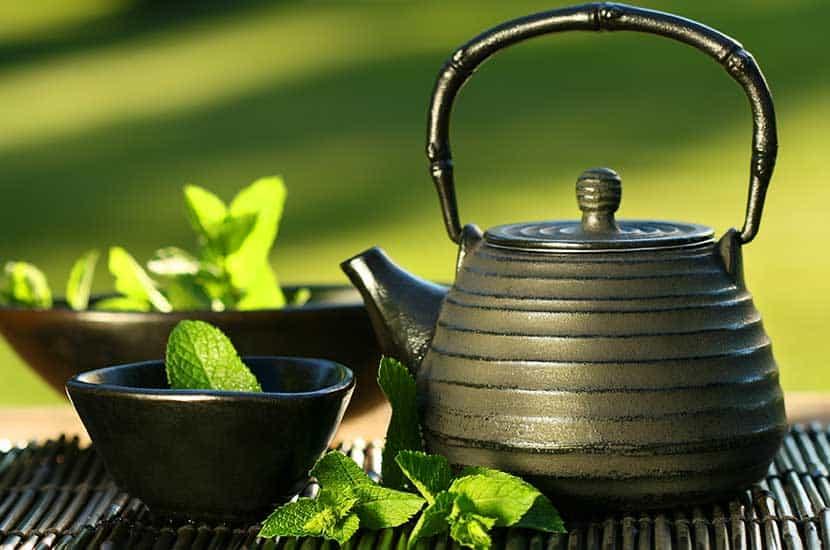 El extracto de té verde puede ayudar a acelerar el metabolismo