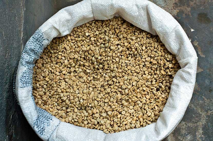 El ácido clorogénico está presente en el café verde sin tostar