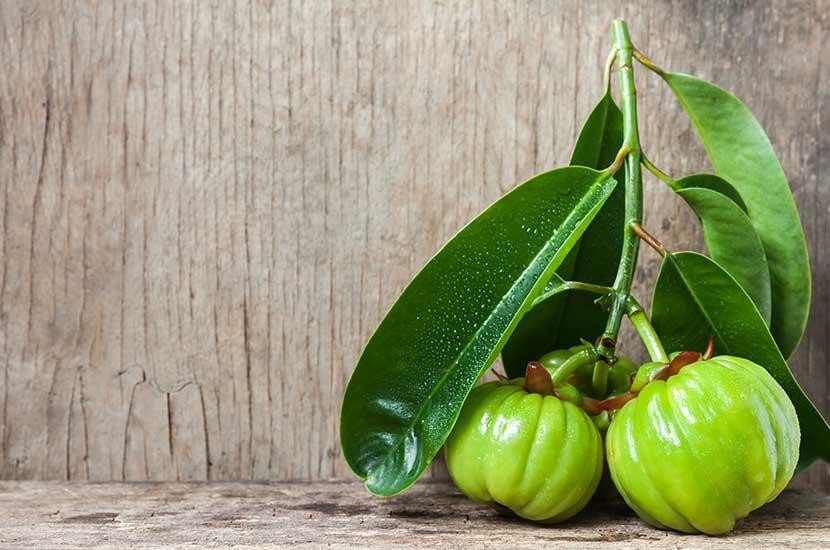 El extracto de garcinia cambogia puede ayudarte a controlar el apetito
