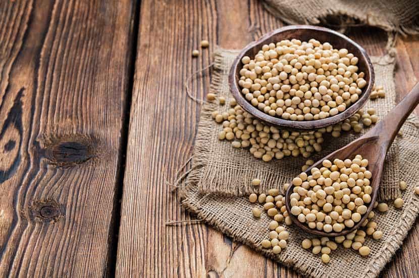Tomar suplementos con proteína de soja puede contribuir a la pérdida de peso