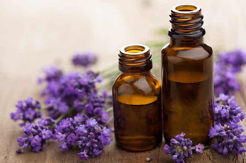 Los aceites esenciales tienen importantes propiedades antimicóticas