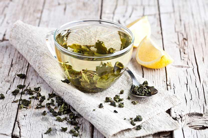 El té verde contiene importantes antioxidantes que pueden ayudarte a perder peso