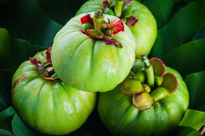 La garcinia cambogia es una fruta rica en ácido hidroxicítrico