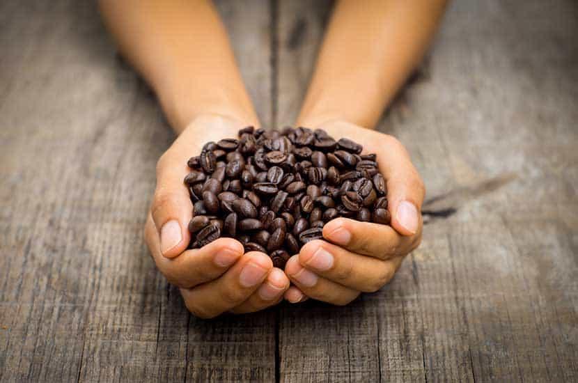 La cafeína es capaz de penetrar el cuero cabelludo