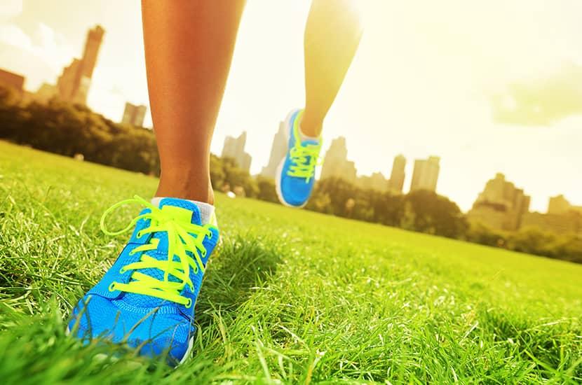ejercicio puede estimar la circulación de la sangre