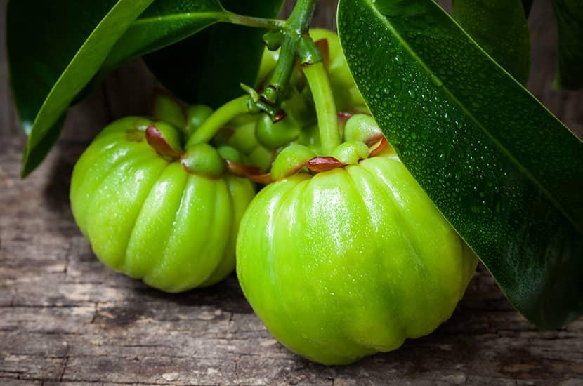 La garcinia cambogia contiene compuestos que pueden estimular la pérdida de peso.