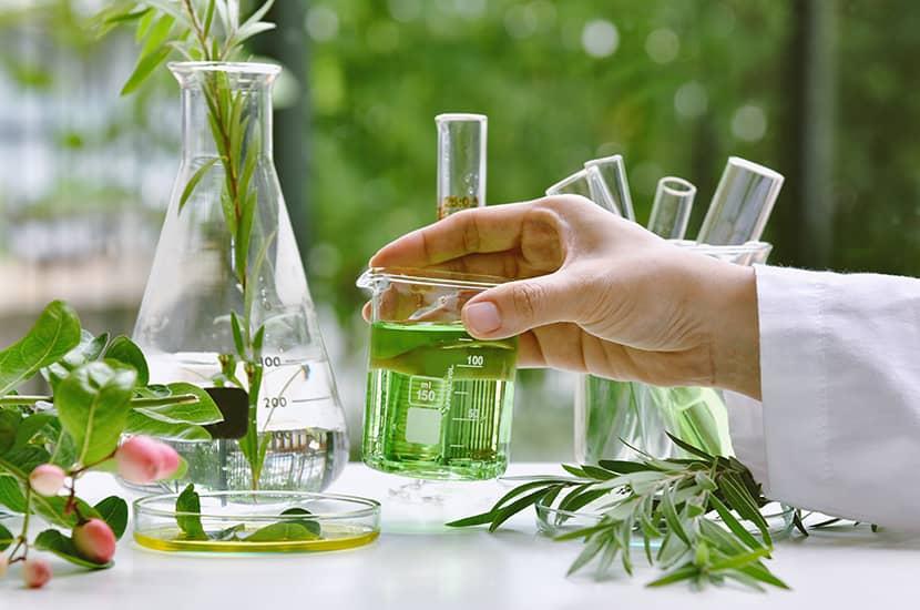 La fórmula de Fungalor crema contiene climbazole, farnesol, vitamina E y aceites esenciales