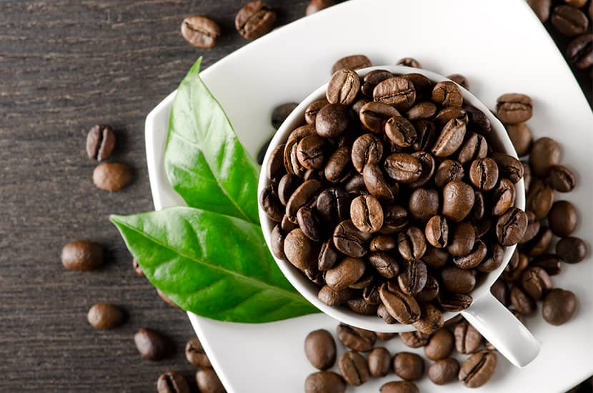 La cafeína anhidra se obtiene de la planta de café