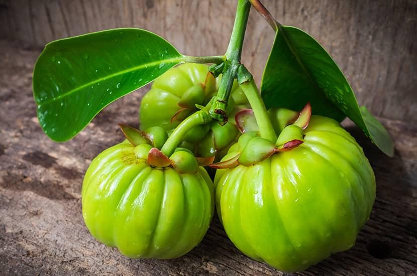 Los estudios sugieren que Garcinia cambogia puede ayudar a quemar grasa y perder peso