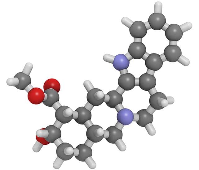La yohimbina contiene moléculas afrodisíacas