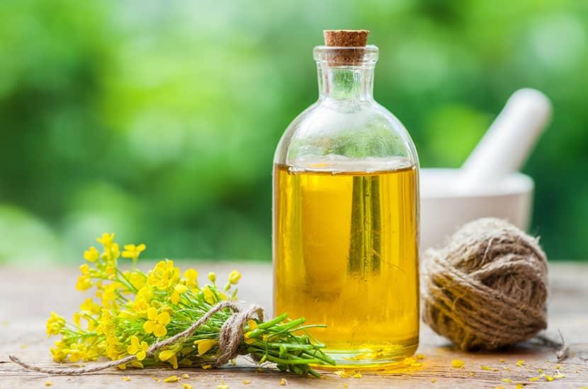 El aceite de colza es rico en ácidos grasos omega-3