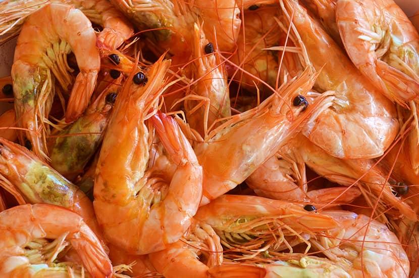 El quitosano es un polímero natural encontrado en crustáceos