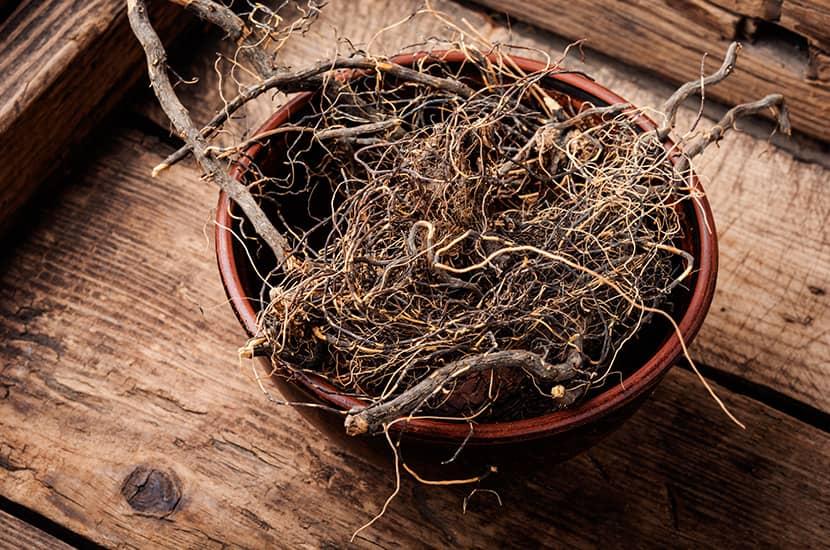 La raíz de maral tiene un efecto positivo sobre la función sexual