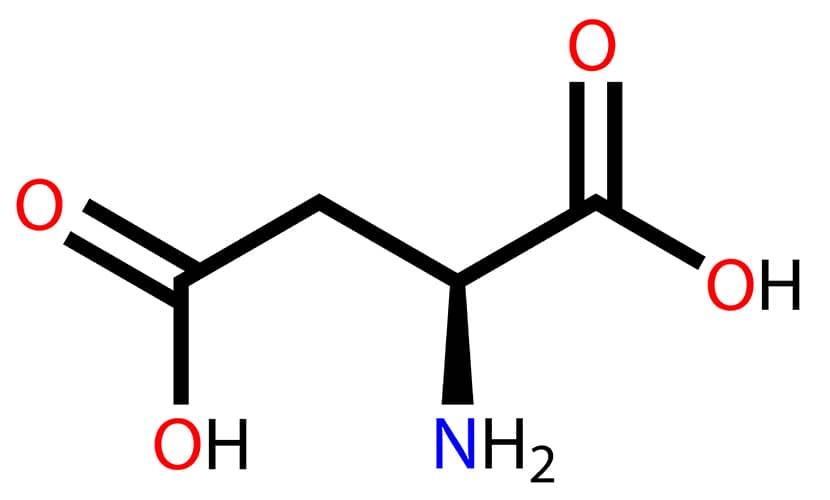 El ácido D aspártico es un aminoácido capaz de influir directamente sobre el tejido de los testículos