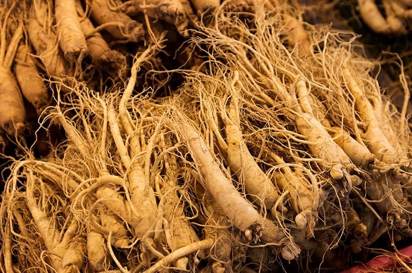 El ginseng es una de las hierbas asiáticas más estudiadas sus habilidades afrodisiacas
