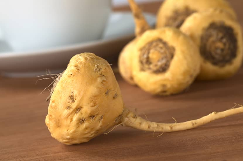 Estudios indican que la raíz de maca mejora la calidad de la esperma